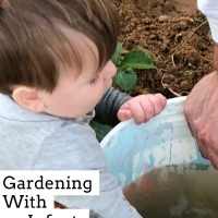 An Interest in Gardening: Beginning Documentation